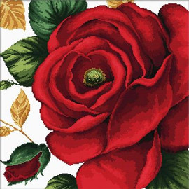 Rose No Count Cross Stitch Kit By Riolis