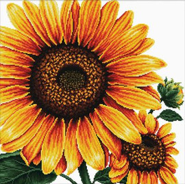 Sunflower No Count Cross Stitch Kit By Riolis