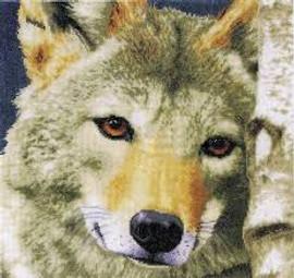 Wolf cross Stitch Kit by Lanarte