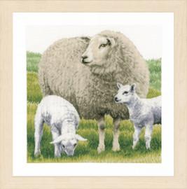 Counted Cross Stitch Kit: Sheep (Aida) By Lanarte
