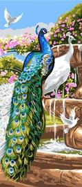 Peacock Garden CANVAS By Grafitec