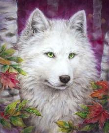 White Wolf CANVAS By Grafitec