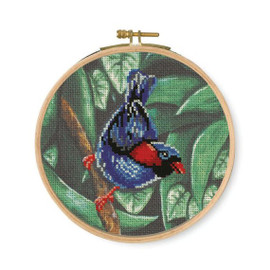 Parakeet Printed Counted Cross Stitch Kit By DMC