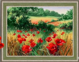 Poppies in the Field Diamond Painting Kit