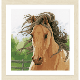 Counted Cross Stitch Kit: Mane in the Wind on aida by Lanarte