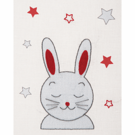 Embroidery Kit with Hoop: Baby Sets: Bunny By Anchor