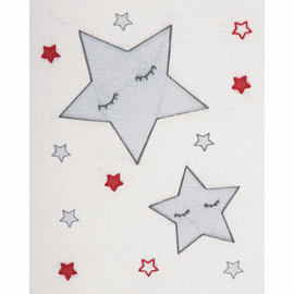 Embroidery Kit with Hoop: Baby Sets: Stars By Anchor