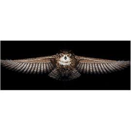 BIG OWL-cross stitch kit by Andriana