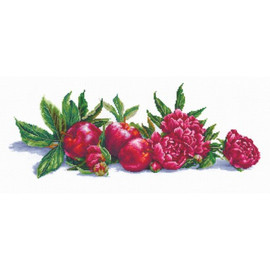 APPLES AND PEONIES -cross stitch kit by Andriana