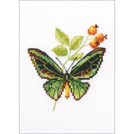 Briar and Butterfly Cross Stitch Kit by RTO