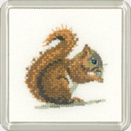 Red Squirrel Coaster Kit  By Heritage Crafts