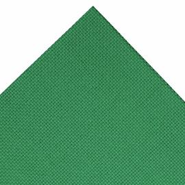 Green 14 Count Aida : 30 x 45cm (18 x 12inches)