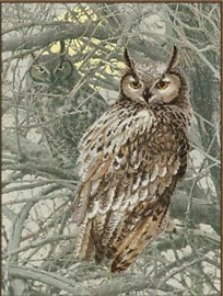 Eagle Owl Cross Stitch Kit By Riolis