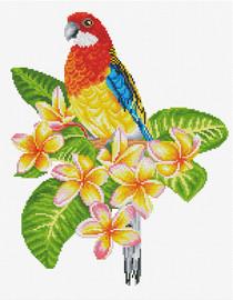 Frangipani Rosella Printed Cross Stitch Kit By Needleart World