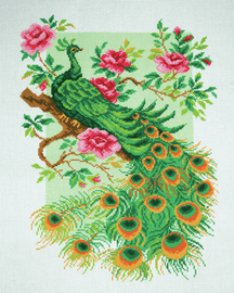 Printed Aida Fabric: Peacock