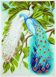Printed Aida Fabric: Peacocks by Collection D'Art