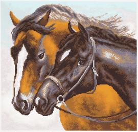 Printed Aida Fabric: Horses