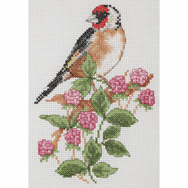 Goldfinch & Berries Counted Cross Stitch starter Kit by Anchor