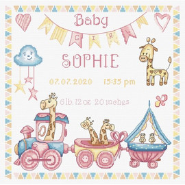 Baby Girl Record Cross Stitch Kit by Letistitch