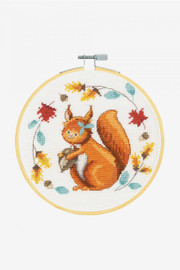 Adorable Squirrel Cross Stitch Kit by  DMC