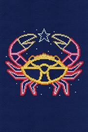 Cancer Star Sign Cross Stitch Kit by DMC