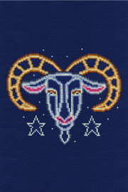 Capricorn Star Sign Cross Stitch Kit by DMC