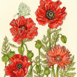 Poppy Garden Cross Stitch Kit by Bothy Threads