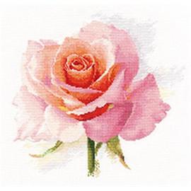 Rose Tenderness Cross Stitch Kit By Artibalt
