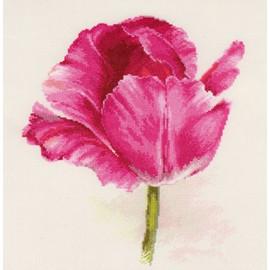 Crimson Glow Tulips Cross Stitch Kit By Artibalt