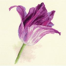 Lilac Velvet Tulips Cross Stitch Kit By Artibalt