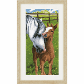 Horse and Foal Counted Cross Stitch by Vervaco