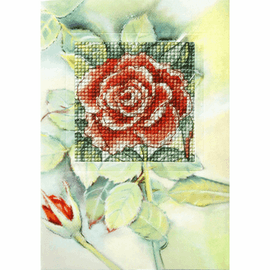 Rose  Counted Cross Stitch Greetings Card  Kit by Orchidea