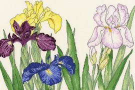 Iris Blooms Cross Stitch Kit by Bothy Threads