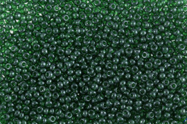 Seed Beads Dark Green 12g by Gutermann