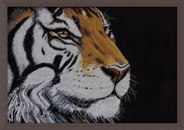 Orange Tiger Counted Cross Stitch Kit By Design Works