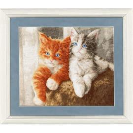 Fluffy Kittens Cross Stitch Kits By Golden Fleece