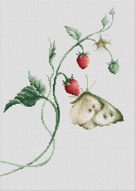 Aroma of Summer Counted Cross Stitch Kit by Luca S