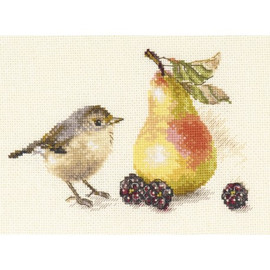 Bird And Pear Cross Stitch Kit By Alisa