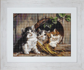 Friendly Shelter Petit Point Kit By Luca S
