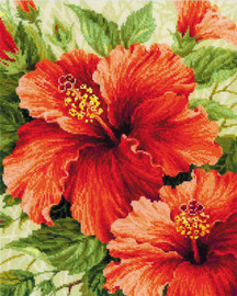 Hibiscus Counted Cross Stitch Kit By Riolis