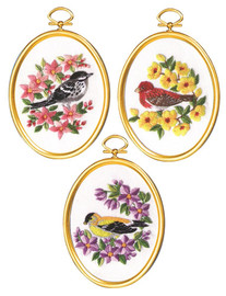 Warblers & Finches Freestyle Embroidery Kit By Janlynn
