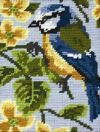 Blue Tit Tapestry Starter Kit