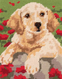Labrador Starter Tapestry Kit