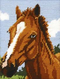Horse Tapestry Starter Kit