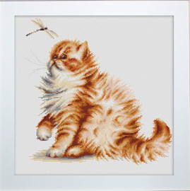 Kitten With A Dragon Fly Cross Stitch Kit By Luca S