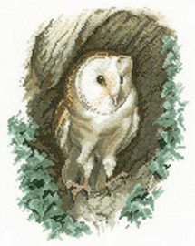 Barn Owl Cross Stitch Kit By Heritage