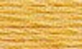 3855 - DMC Stranded Thread Art 117