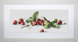 Strawberries Cross Stitch Kit By Luca S