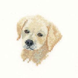 Golden Labrador Puppy Cross Stitch Kit For Beginners