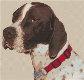 English Pointer Dog Cross Stitch Chart